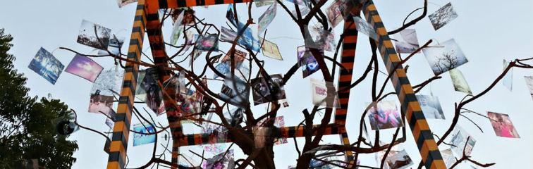 Reclaiming Karachi's Public Spaces Through Art