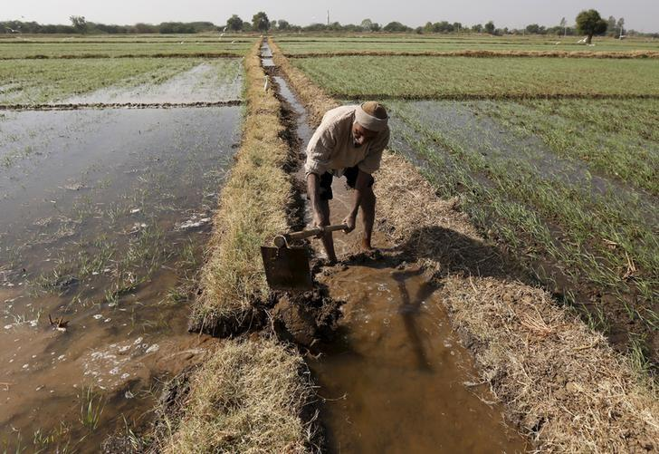 Amid An Important Farmer Debate, Don't Forget the Woes of India's Landless Workers