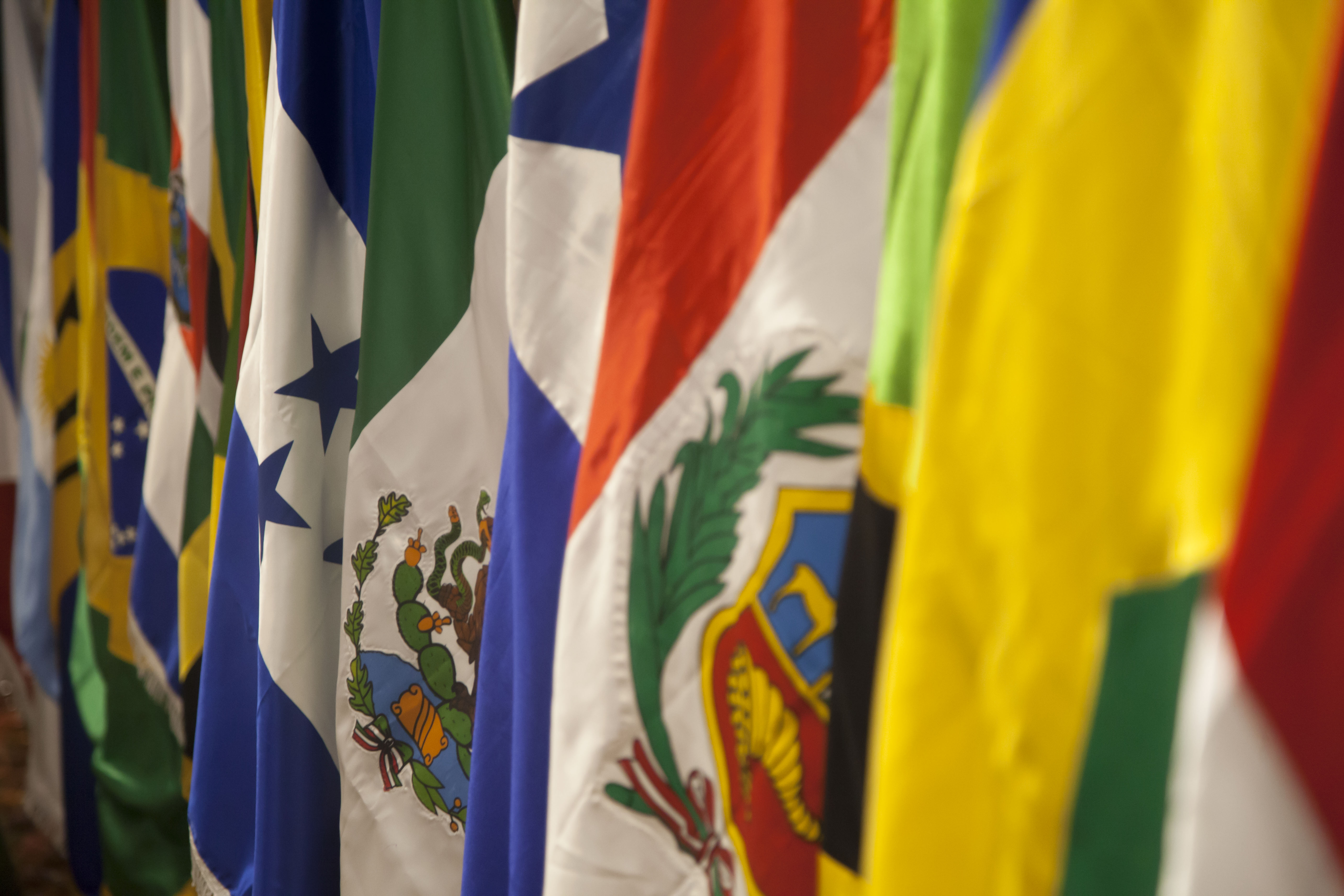 Flags of some Latin American countries. Credit: Wikimedia Commons