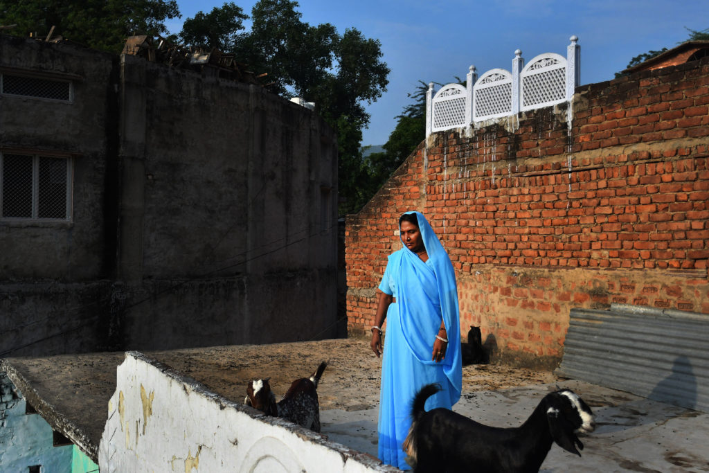 Rehabilitated manual scavenger, Maya Sangeliya, 45, walks her goats on a terrace of her house, in Alwar, Rajasthan, India on 24 September 2016.