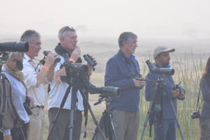 Birders in action during an afternoon field trip. Courtesy: Ram Pratap Singh, Chambal Safari Lodge