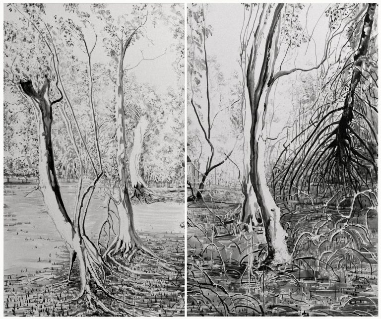 Mangroves: The Forests of the Tide