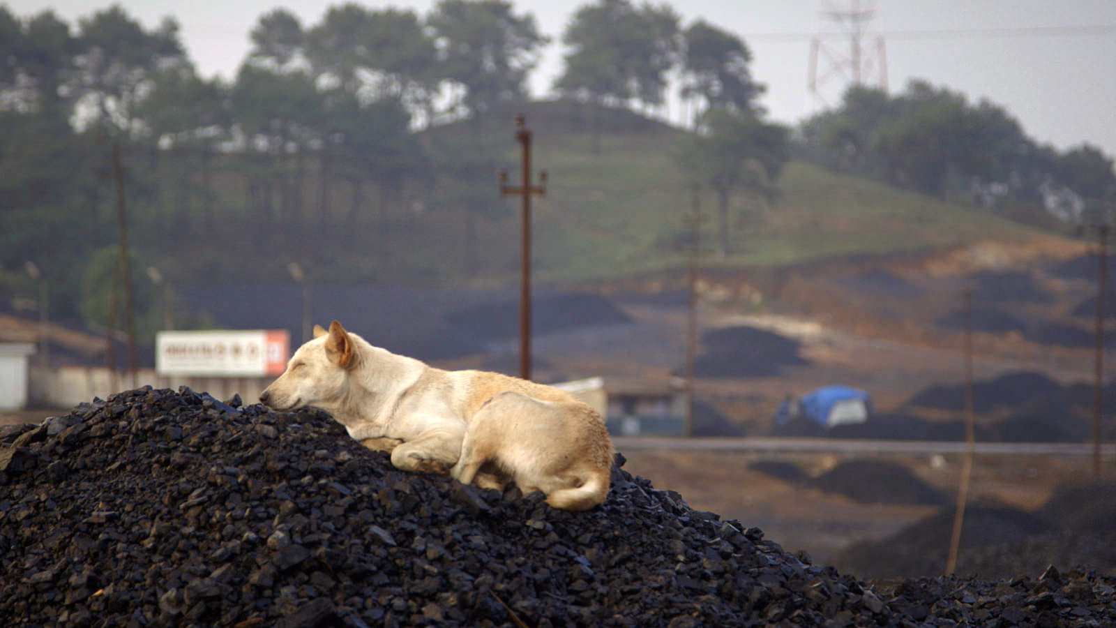 Representative image of coal mining. Credit: Flickr/ECSP CC 2.0