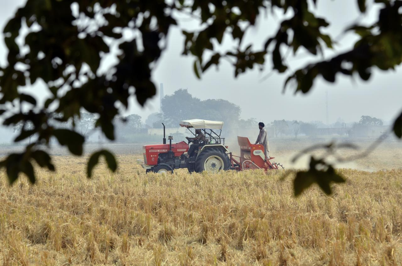 Indian Agriculture's Grave Tragedy Has its Genesis in the Failure of Markets
