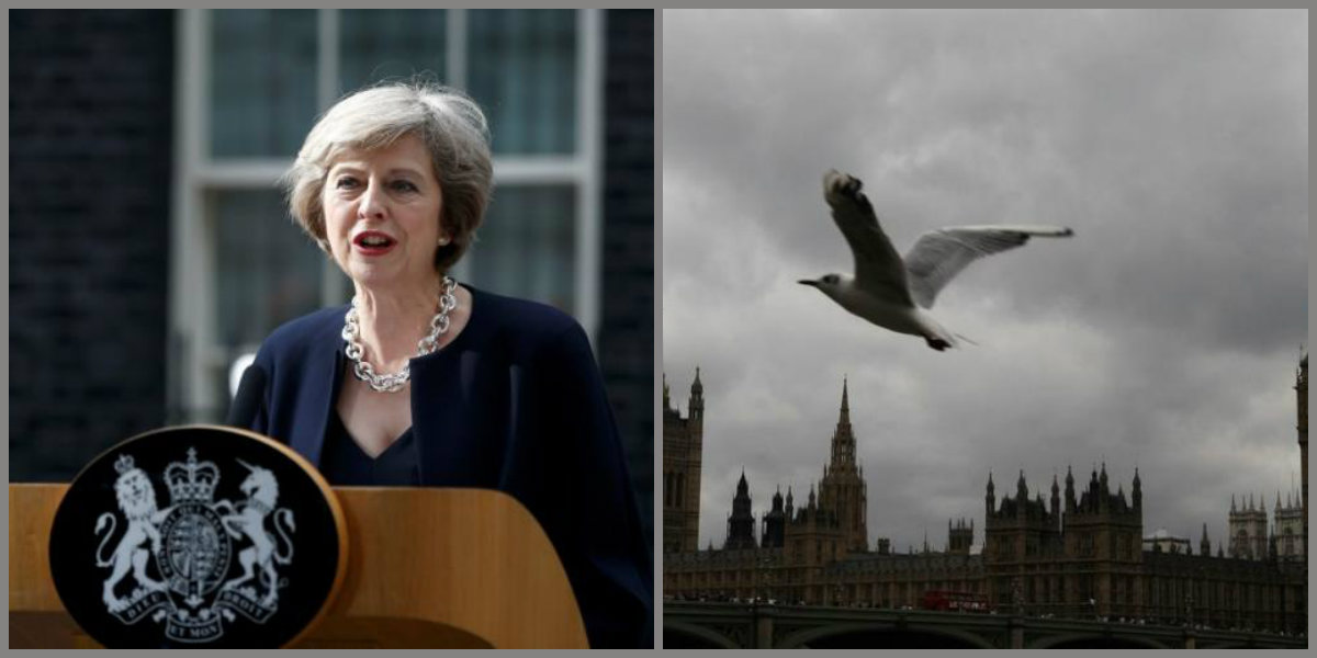 Brexit Judgment Highlights Paradox of Popular Will and Parliamentary Sovereignty