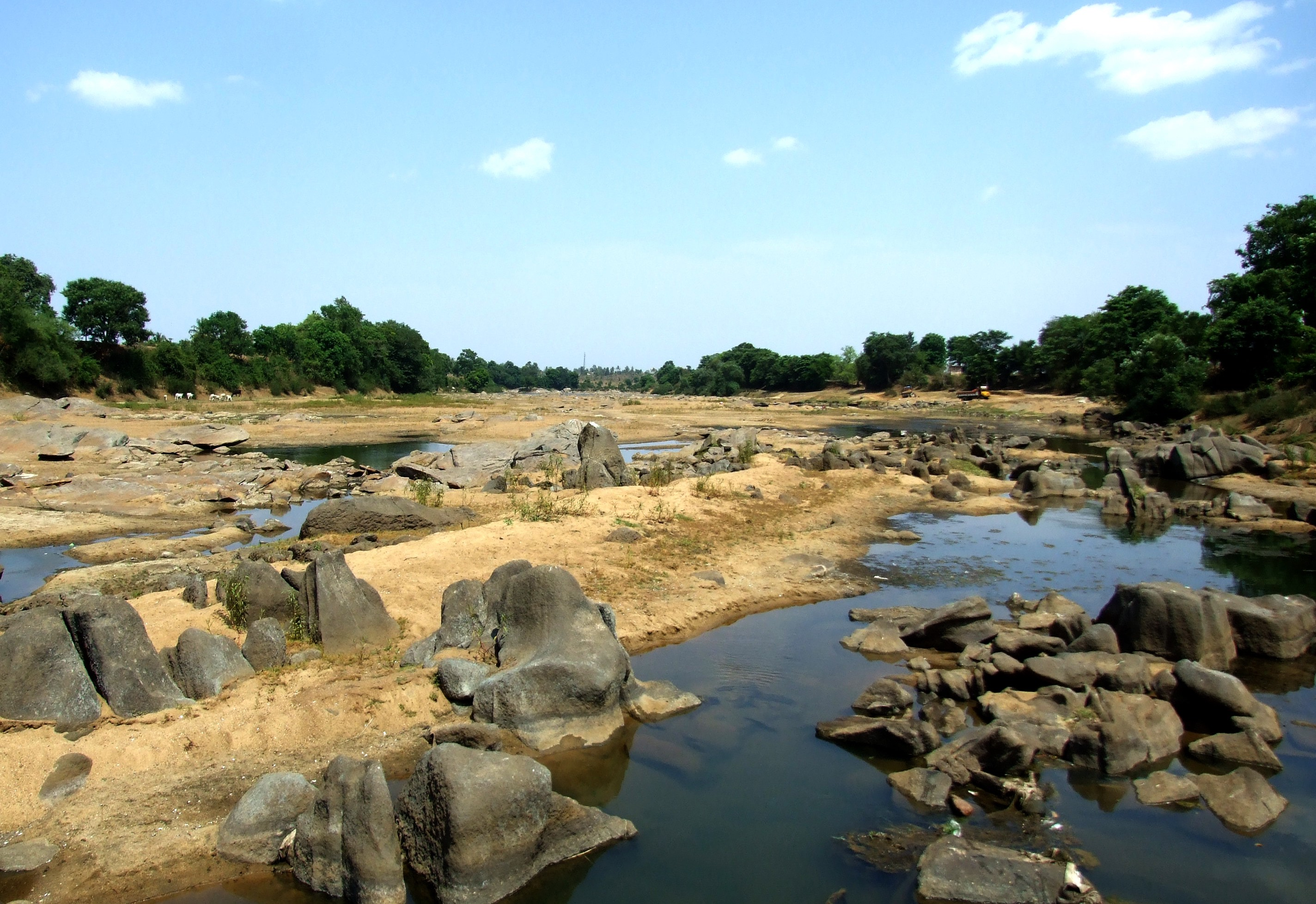 Rampant and illegal sand mining had exposed the spine of the river. Credit: Nisarg Prakash