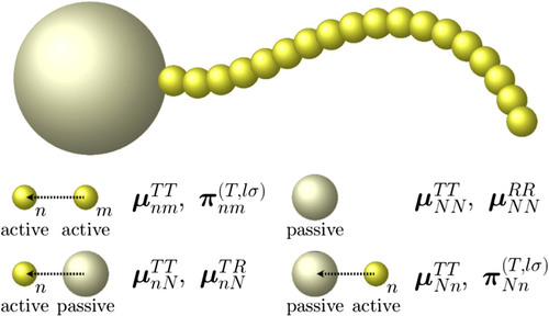 An image of the active particle that scientists from IIT Madras and Matscience modelled. Credit: The Journal of Chemical Physics 146, 024901 (2017)