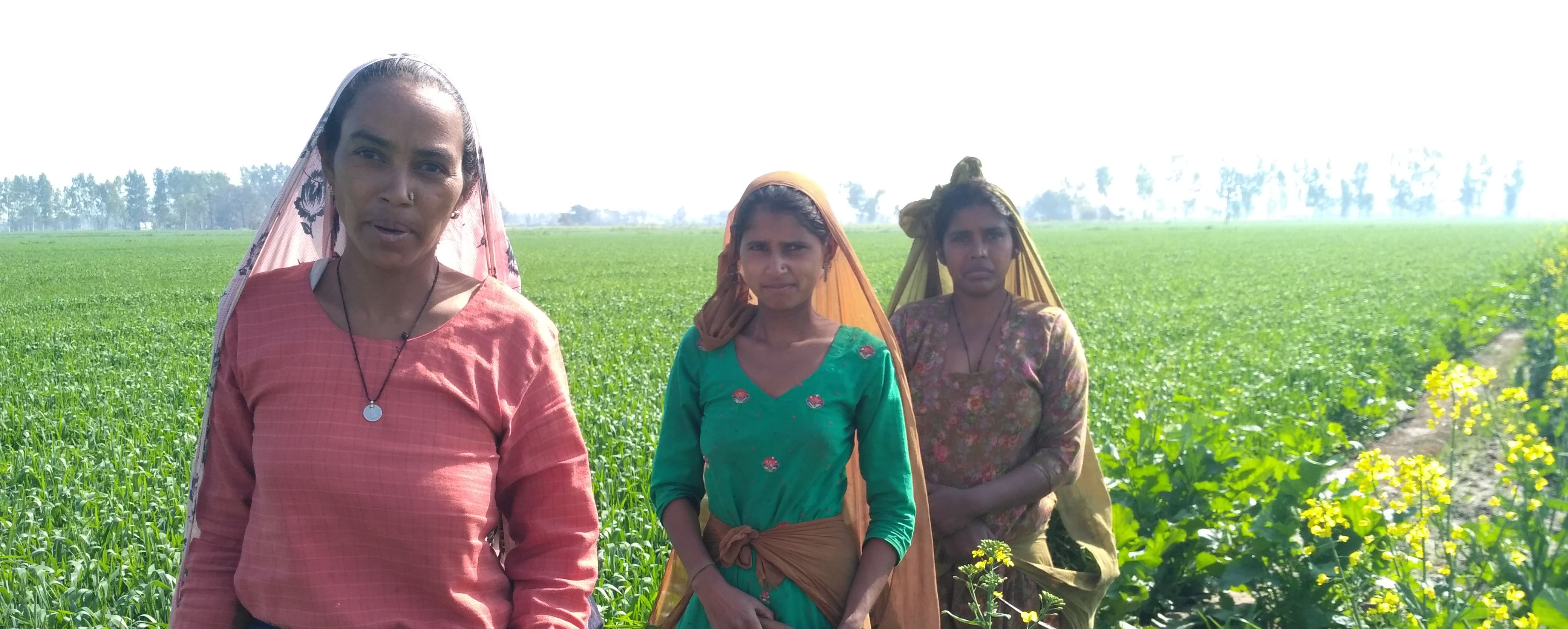 'Our Votes are Meaningless if We Don't Have Our Land': Dalit Women in Punjab