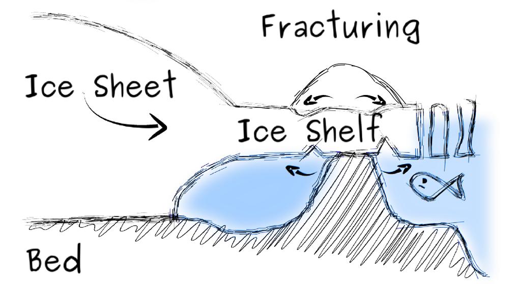 Ice shelf images