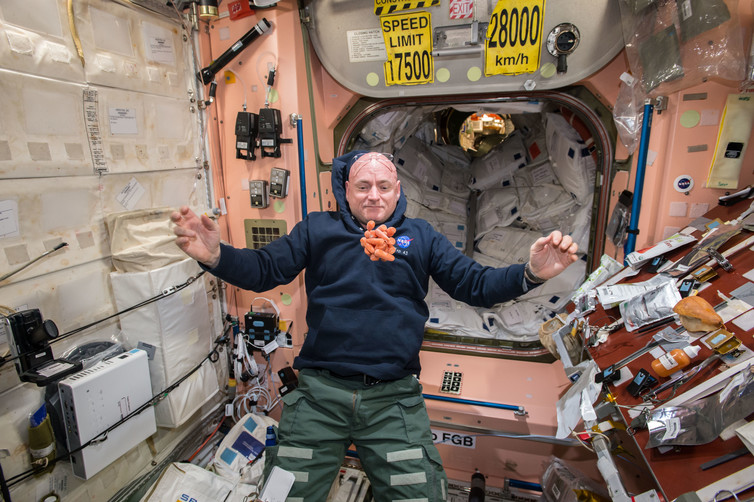 Scott watches a bunch of fresh carrots at the ISS. Credit: NASA