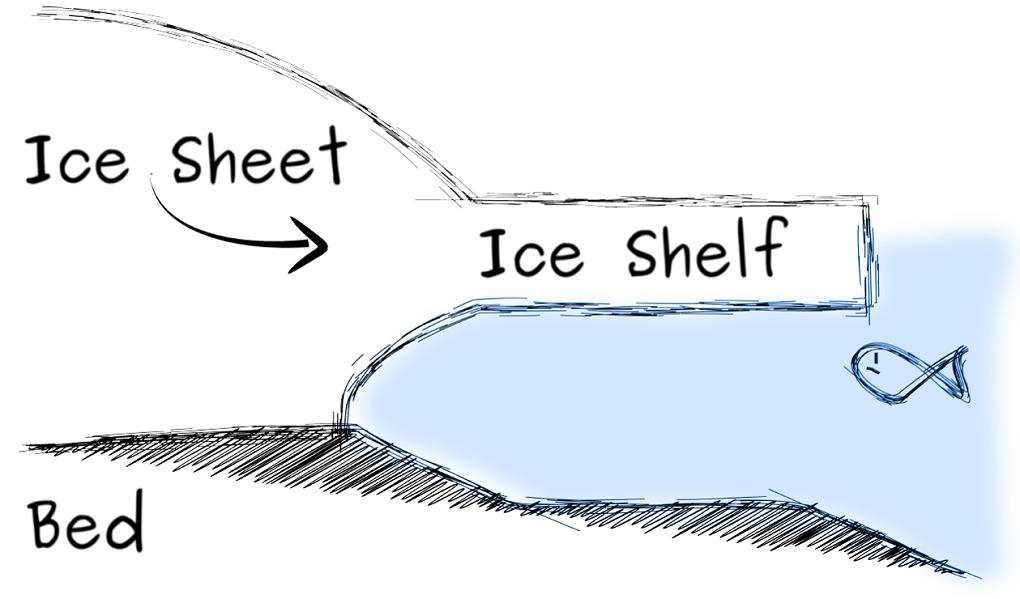 This is how an ice shelf looks without an ice rise