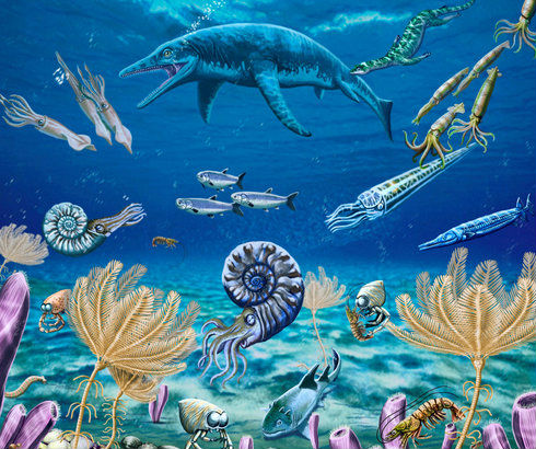 triassic marine ecosystem 2