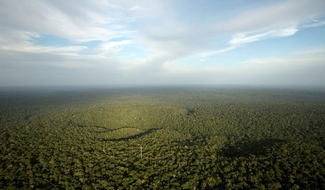 A view is seen from the Amazon Tall Tower Observatory (ATTO) in Sao Sebastiao do Uatuma in the middle of the Amazon forest in Amazonas State, Brazil, January 10, 2015. Credit: Bruno Kelly/Reuters