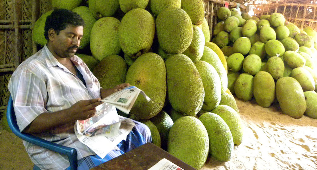 Jackfruit Enjoys a Second Spring in Kerala