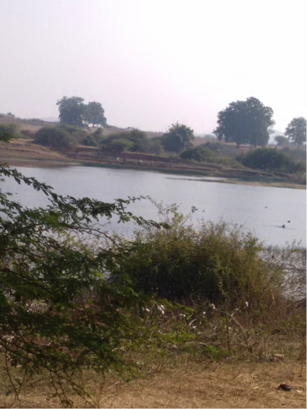 Widening of a pond in the outskirts of Chhodavani village under MGNREGA. Courtesy: Udayan Rathore