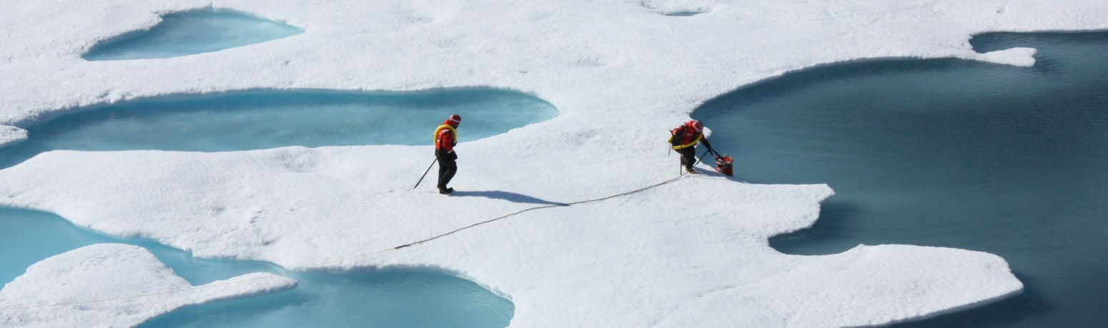 Arctic Ice Loss Driven By Natural Swings, Not Just Mankind, Says Study