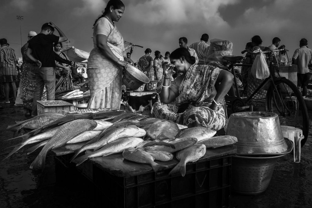At a fish market. Credit: Ramesh SA/Flickr, CC BY ND 2.0