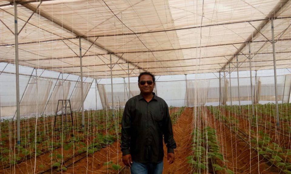 Giving Up a Career in the US For Organic Farming