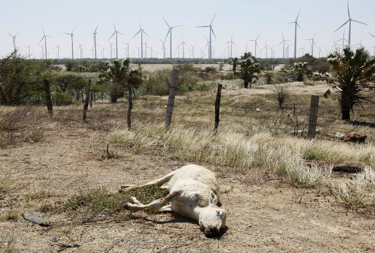 Resource extraction in Mexico's arid climate comes at the cost of agricultural devastation in some border areas. Credit: Reuters