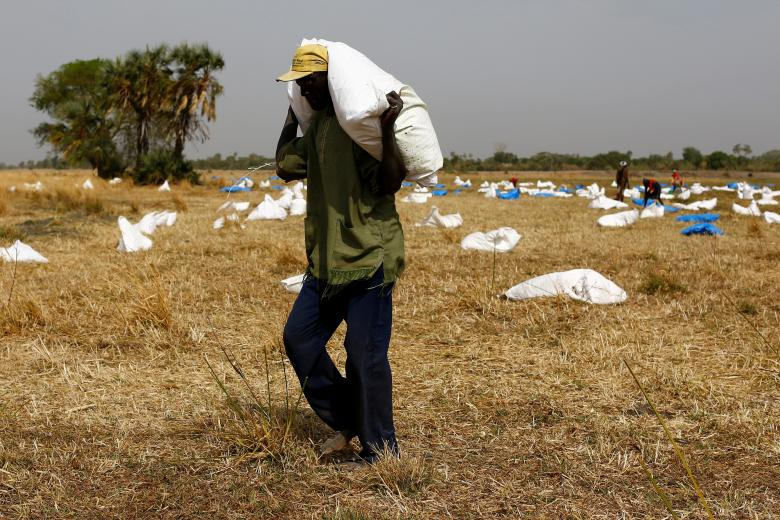 A man collects sacks of food from a dry river bed after a UN World Food Programme airdrop close to Rubkuai village in Unity State, northern South Sudan. Credit: Siegfried Modola/Reuters