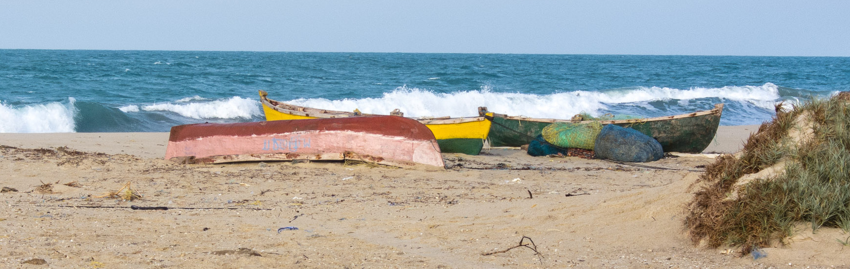 What the 45-Day Annual Fishing Ban in Tamil Nadu Means for Fisheries Conservation