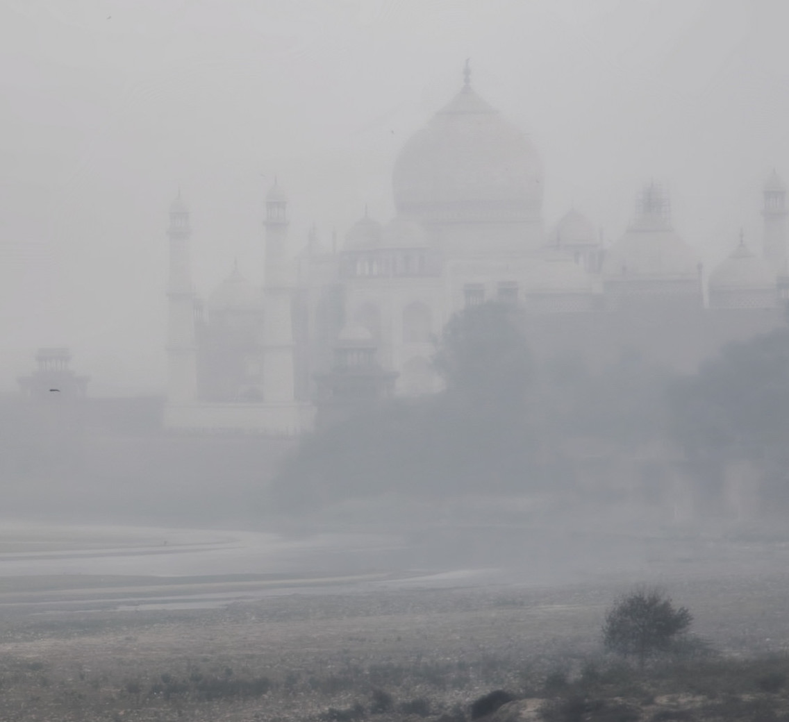India Has an Ammonia Problem but No Policy to Deal With It