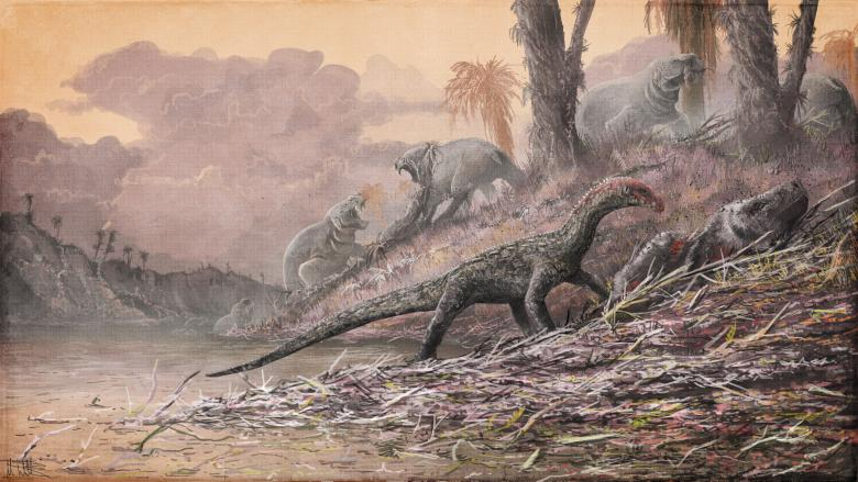 An artist depiction of a life reconstruction of Teleocrater rhadinus feasting on a deep relative of mammals, Cynognathus, shown in this handout provided April 11, 2017. Credit: Natural History Museum, London, artwork by Mark Witton/Handout via Reuters