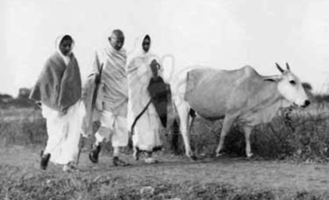 Gandhi walking past a cow. Credit: eBay