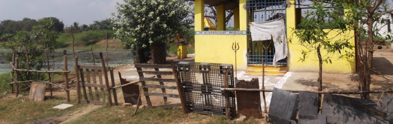 Shrines Bloom in Tamil Nadu as Subaltern Builders Seek Divine Guardians, and a Patch of Land