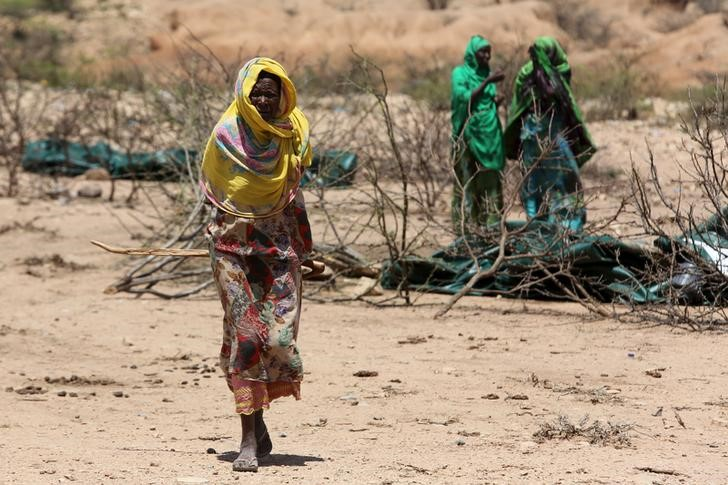 People Needing Food Aid in Ethiopia Reaches 7.7 Million Due to Drought