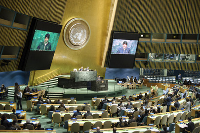 Why the UN Needs to Bring Parliamentarians on Board