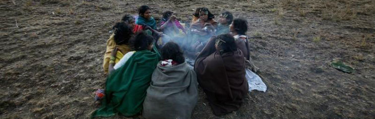 Armed With a Toothless Law, the Plight of the Adivasi Worsens