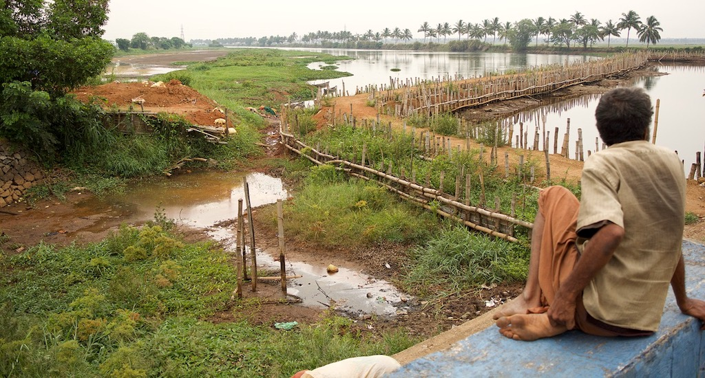 Kole Farmers of Kerala Reel Under Unprecedented Drought