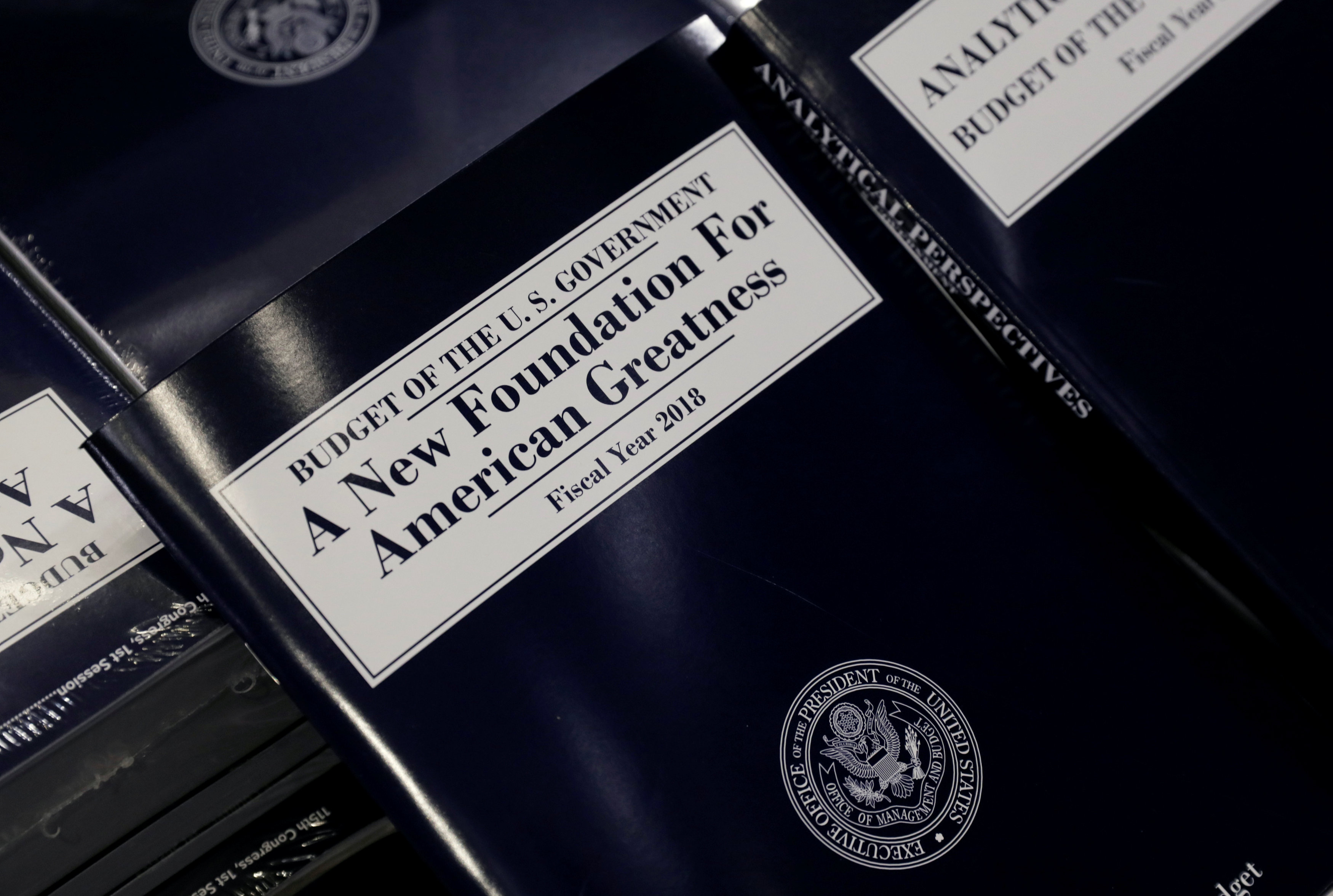 Trump Aims to Reduce $3.6 Trillion of Expenditure in Austere Budget