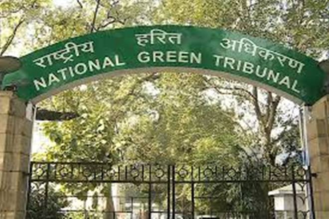 NGT Directs UP Govt to 'Strictly Monitor' Encroachments Over Green Belts