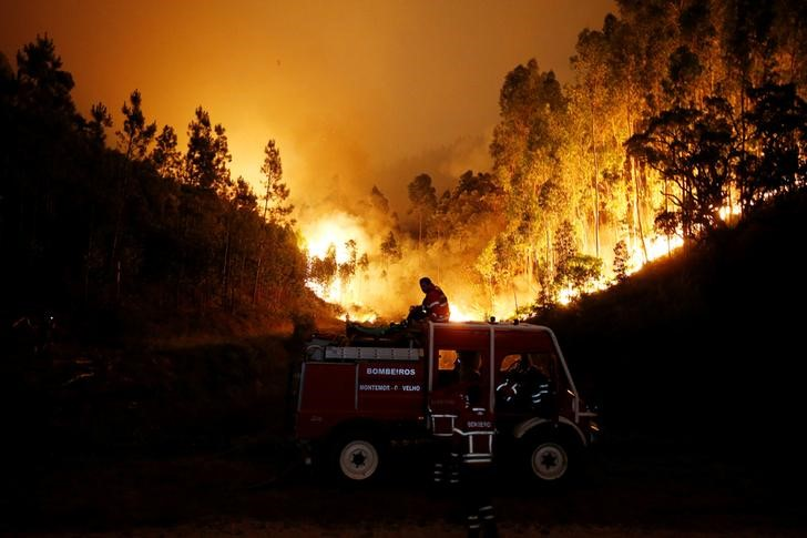 Portugal: Death Toll From Forest Fire Climbs to 62