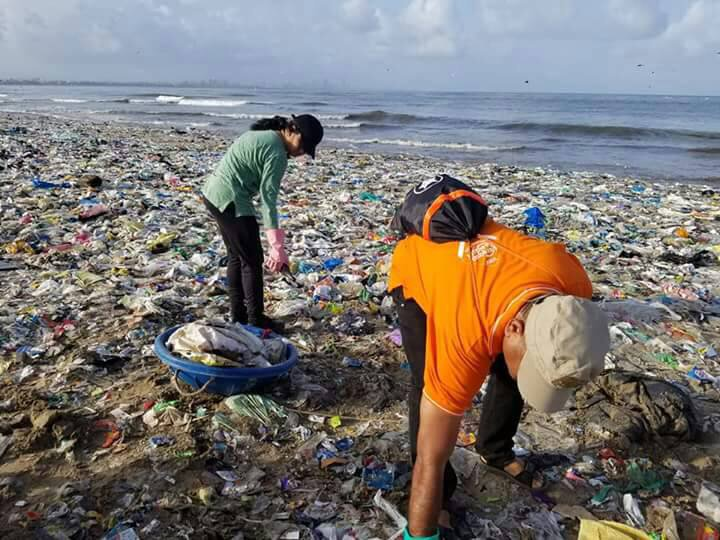 In Mumbai, 'World's Largest Beach Clean-Up' Has Transformed the Versova Shore