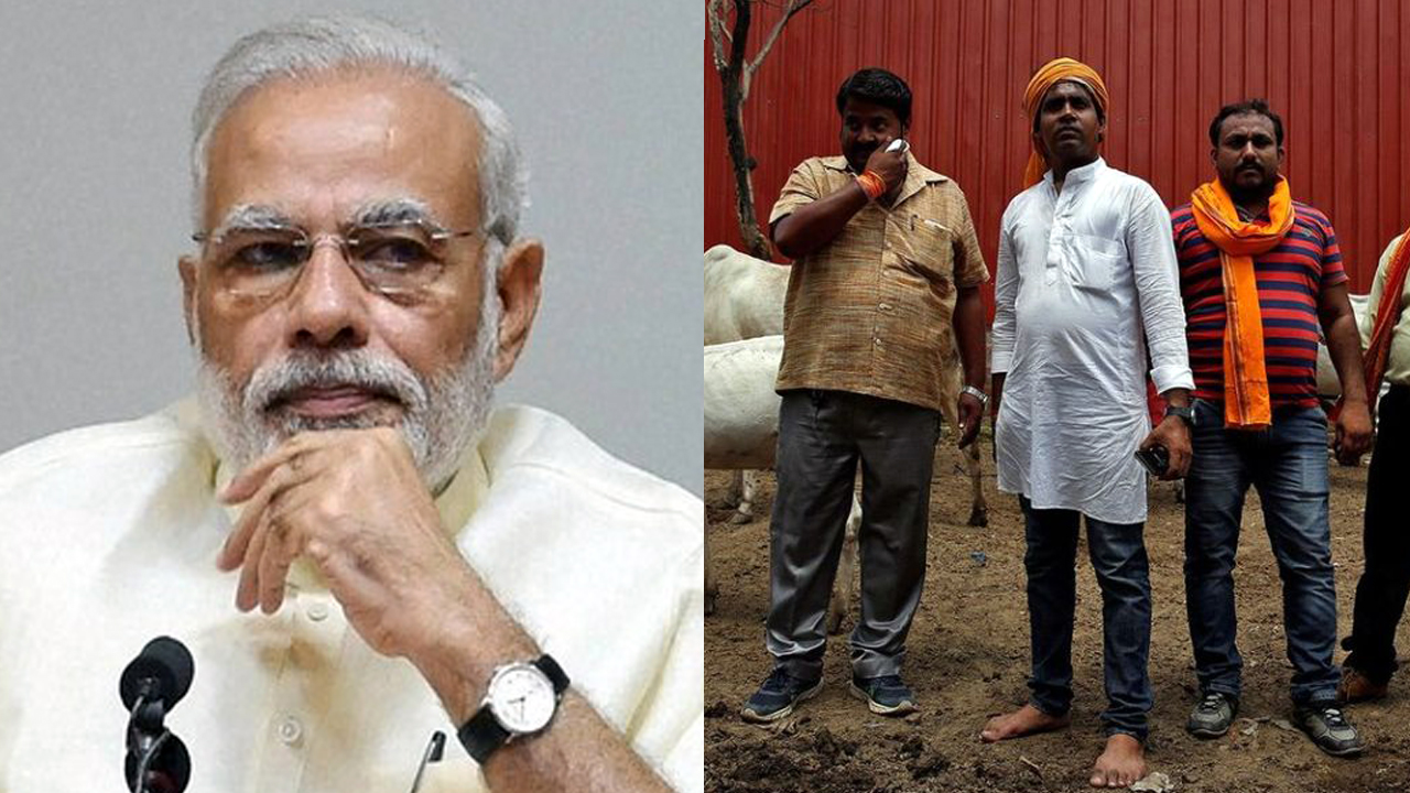 Modi and Cow Violence: The Gap Between His Words and the BJP's Deeds