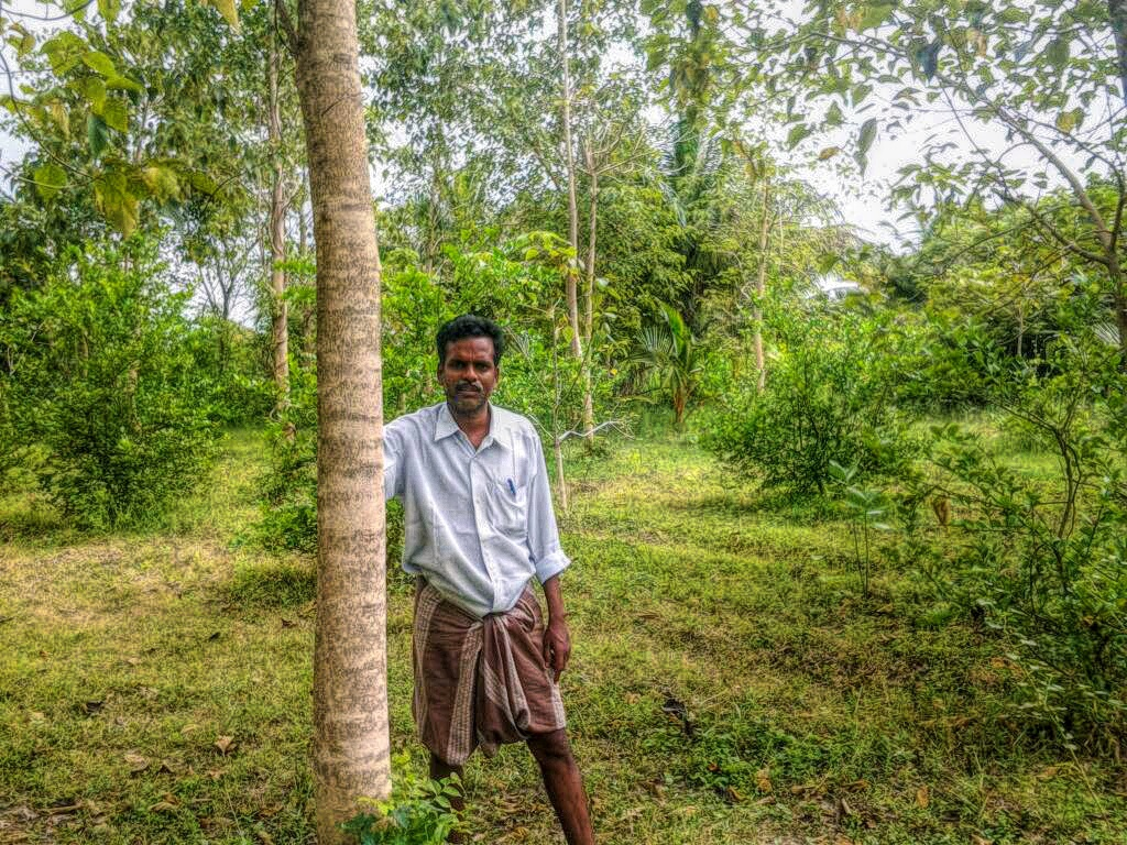 These Farmers Have Crafty Fixes to Beat Tamil Nadu's Drought