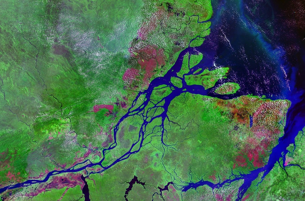 Brazil's Oil Plans Cast Shadows Over Newly Found 'Stunning' Amazon Reefs