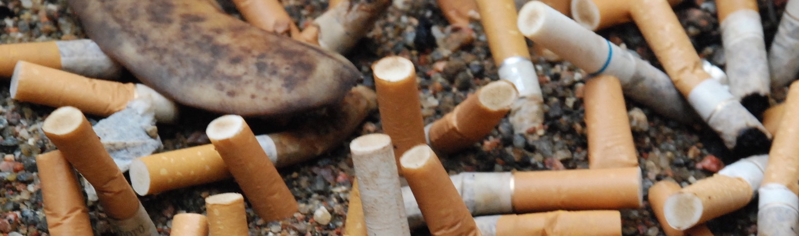 How the Use of Tobacco Affects the Environment