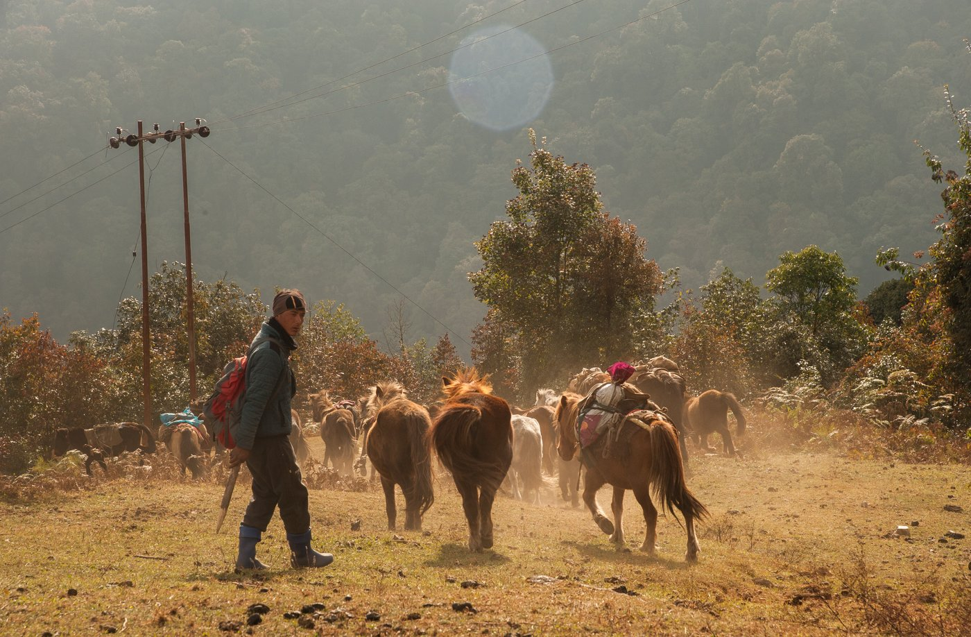 Brokpa herders move frequently, from higher altitudes to lower lands, and from the lowlands to the mountain ranges. They carry rations and other provisions. Migrating within their permanent settlements – locations fixed by the community – is a continual process. Credit: Ritayan Mukherjee