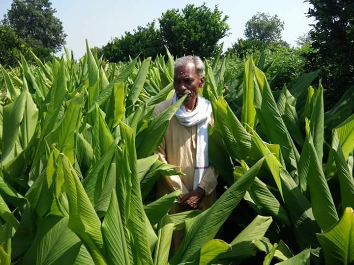 Palekar on his fields. Courtesy: Subhash Palekar