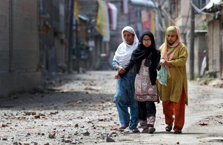 The Shining Women of Kashmir