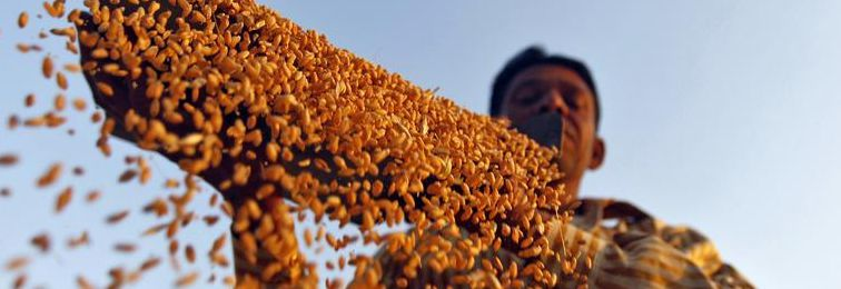 Why India Must Go Beyond Loan Waivers to Free Farmers From Debt