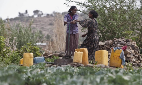 Young girls and women collecting water from a water spring situated in a cabbage field owned by a local woman farmer and FAO-EU Project beneficiary in Ethiopia. Credit: FAO