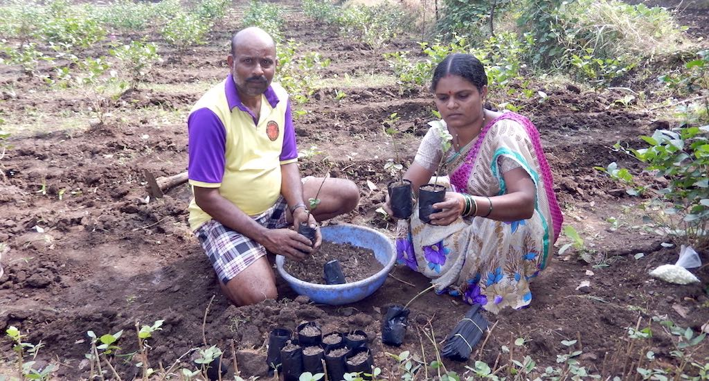 How a Woman Is Changing Farming in Palghar District of Maharashtra