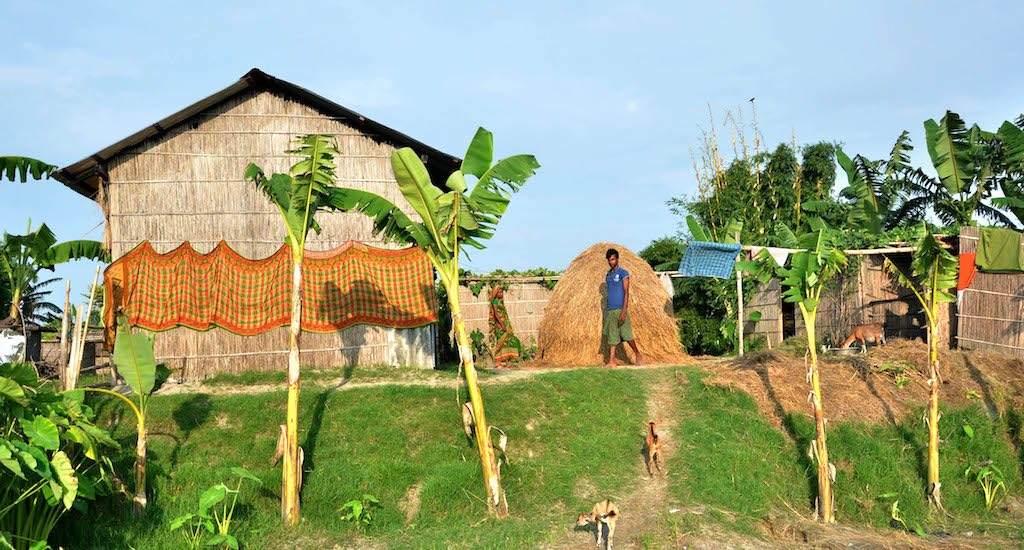 High Houses on River Islands in Assam Untouched by Floods