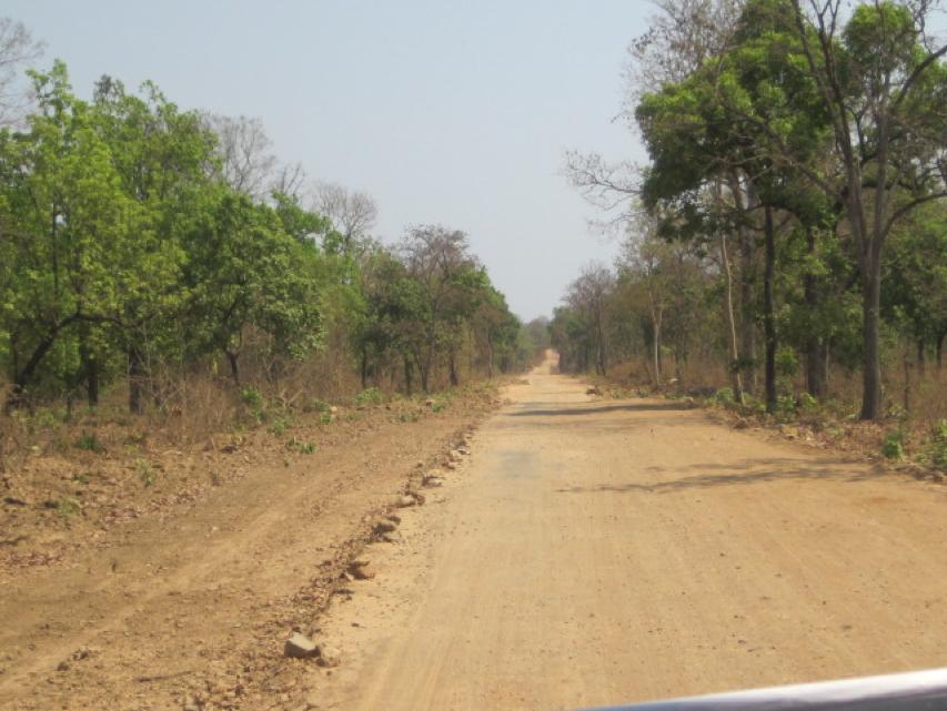 Road to Telangana, South Chhattisgarh. Credit: Madhu Ramnath