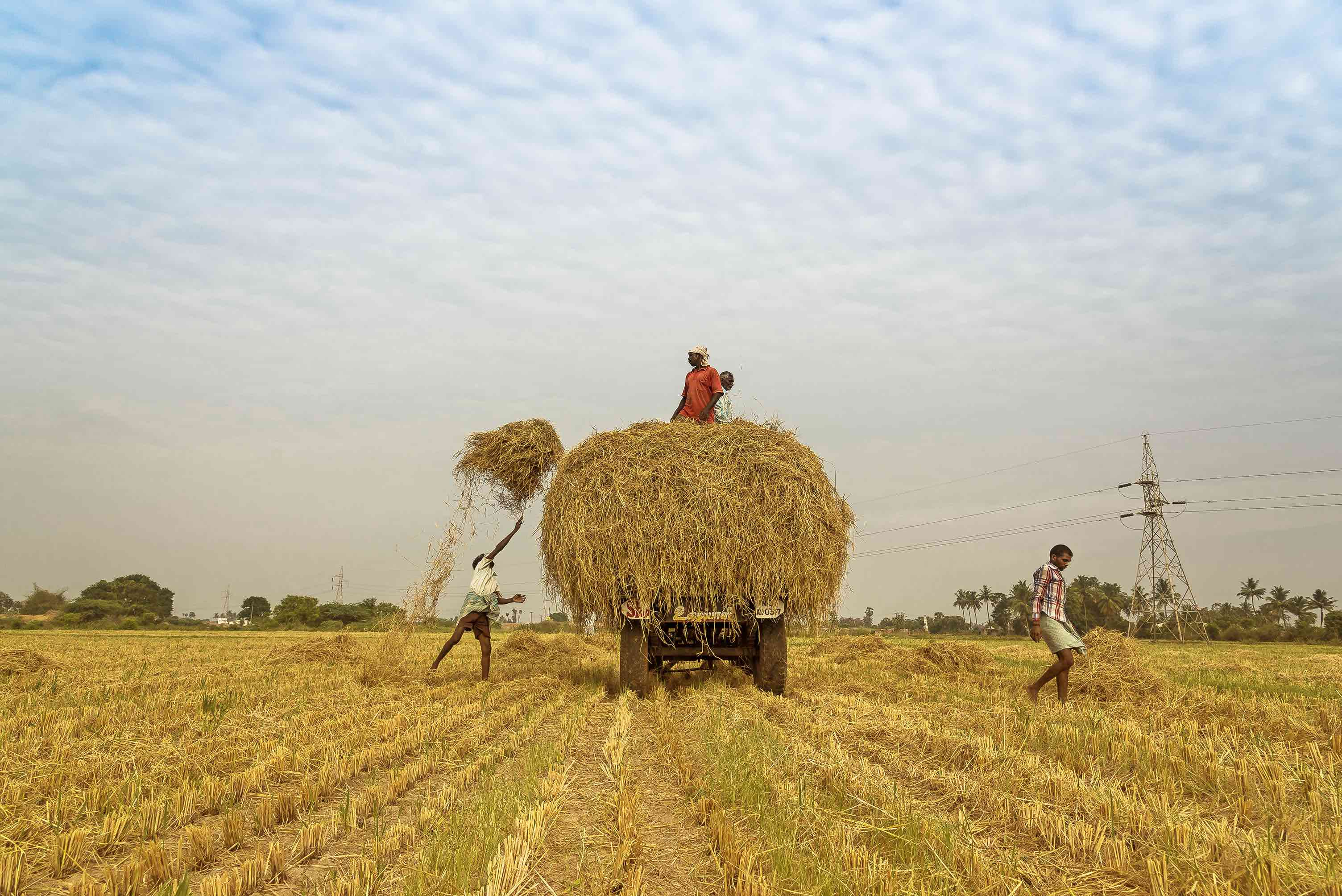 Assuring Higher Farmer Income: Centre Passing the Buck to States Yet Again